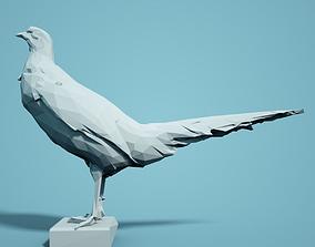 Low Poly Pheasant Model 1 realistic