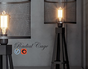 Radial Cage 3D model