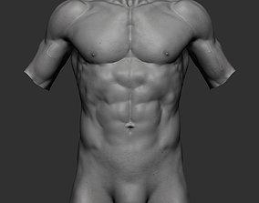 3D Male Torso v3