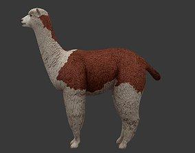 Alpaca 3D model