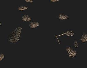 pinecone Pine Cone PBR Tillable Texture 3D model
