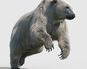 3D rigged polar bear