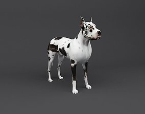 Great Dane 3D Print Ready Dog model