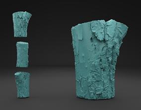 3D print model Scanned Old Log root