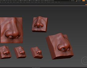 3D model nose low poly and high poly