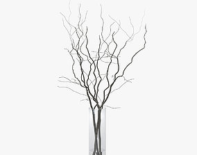 3D model branches in vase