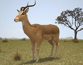 3D Impala