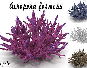 Acropora formosa low poly 3D model