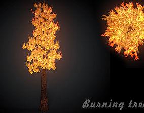 Burning tree big 3D model