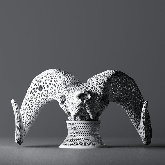 Skull Bighorn Sheep 3d print