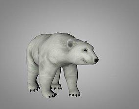 3D asset animated Polar White Bear