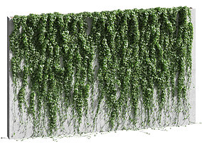 Ivy for the fence v2 3D