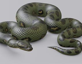 3D model realtime Animated Green Anaconda