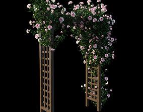 3D Rose plant set 19 trunk