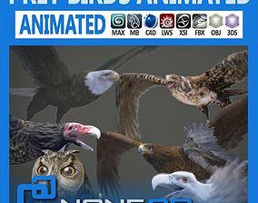Pack - Prey Birds Animated 3D