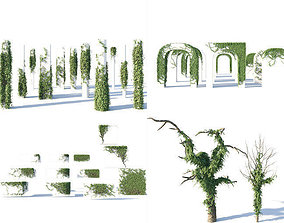 Ivy Collection 3D