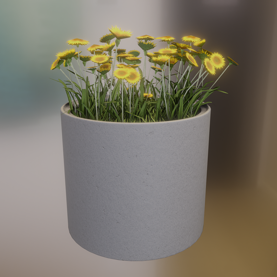 Concrete Pipe Pot 800mm with Small Sunflowers Flower Version 1 (Blender-2.91 Eevee)