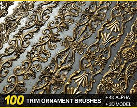 100 Seamless Trim Ornament Brushes 4K Alpha and 3DModels