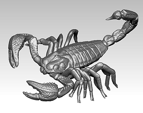 3D print model Scorpion insect