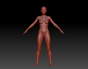 Base female Anatomy 3D print model