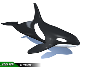 Low-Poly Killer Whale Rigged Animated 3D model animated