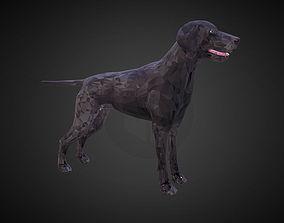 Kurtshaar Black Low Polygon Art Animal 3D asset