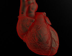 Heart and body 3D