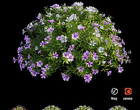 3D model Plant Flower set 19