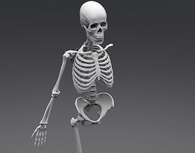 3D printable model Human Skeleton Full Articulated