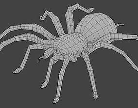 3D model Spider Base Mesh