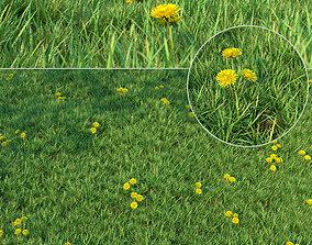 3D model Grass for landscaping