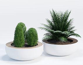 Lid planter 3D
