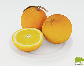 Oranges 3D Model