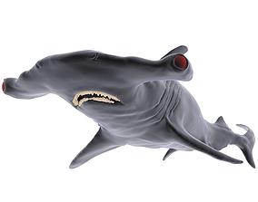 Hammer Shark 3D