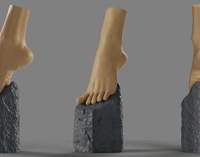 Foot on a stone 3D printable model