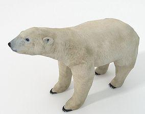 Polar Bear 3D asset low-poly