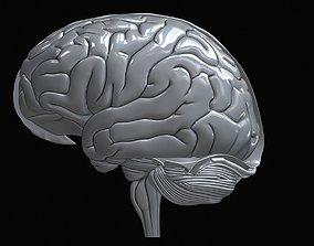 Human Brain Realistic 3D print model