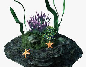 3D Coral 07-