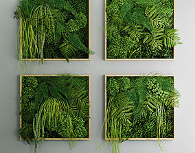 3D Set of moss and fern phyto modules