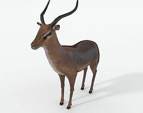 3D model Impala