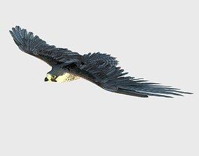 prey 3D model Eagle