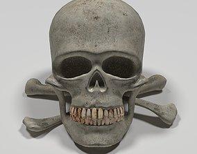 skull and bones 3D asset VR / AR ready