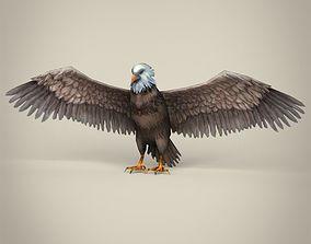Low Poly Realistic Eagle 3D asset