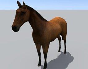 3D model nature Horse