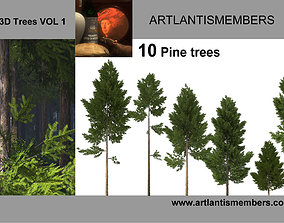 3D pine tree collection 2