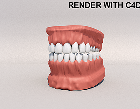 Human Mouth model 3D model