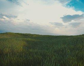 Grass hill 3D model