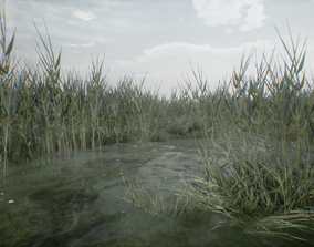3D asset Realistic Optimized Reed