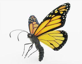 3D model Orange Monarch Butterfly Rigged
