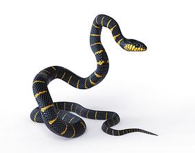 3D asset VR / AR ready Rigged Mangrove Snake